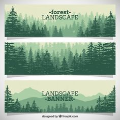 Floral Vectors, Photos and PSD files Banners, Beautiful Forest, Forest Landscape, Photography Business, Banner Design, Wall Murals, Vector Art, Pine, Stock Photos