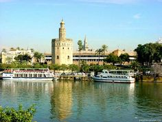 Sevilla, Spain The Golden Tower Check! Places Around The World, The Places Youll Go, Travel Around The World, Places To Go, Around The Worlds, La Tour D'argent, Monuments, Sevilla Spain, Need A Vacation