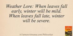Posted to FB Weather Lore: When leaves fall early, winter will be mild. When leaves fall late, winter will be severe. - A Farmers' Almanac Philosofact Old Wives Tale, Wives Tales, Farmer Quotes, Weather Predictions, Old Farmers Almanac, Old Quotes, Happy People, Inspire Others, Good To Know
