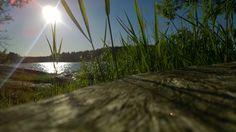 Expériences avec Frantsila Midnight Sun, West Coast, Sunset, Day, Pictures, Outdoor, Finnish Sauna, Finland, Sun