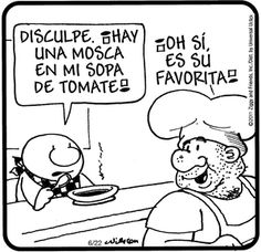 Fly in my Soup / Mosca en mi Sopa (Ziggy)