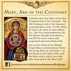 Why Our Lady Loves Processions Early traditional stories about the Blessed Virgin Mary tell us that Our Lady was presented in th. Catholic Theology, Catholic Religion, Catholic Quotes, Catholic Prayers, Catholic Saints, Roman Catholic, Catholic Traditions, Catholic Answers, Blessed Mother Mary