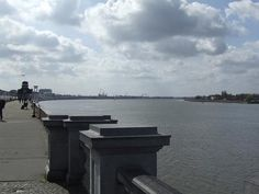 The Scheldt River