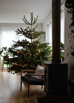 7 Resolute Clever Hacks: Natural Home Decor Living Room simple natural home decor guest rooms.Natural Home Decor Rustic Texture natural home decor modern plants.Natural Home Decor Diy Front Doors. Minimal Christmas, Christmas Mood, Simple Christmas, All Things Christmas, Minimalist Christmas Tree, Natural Christmas Tree, Christmas Trees, Christmas Mantles, Christmas Villages