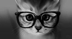Adorable cat with cute glasses