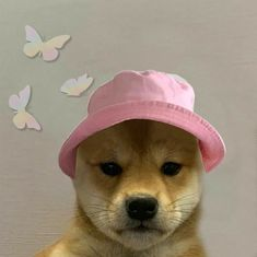Roblox Animation, Dog Icon, Current Mood Meme, Picture Icon, Mood Wallpaper, Animes Wallpapers, Animal Memes, Cute Animals, Profile Pictures