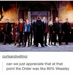 80% - more if you count the fact that harry, hermione, and fleur all married into the Weasley clan