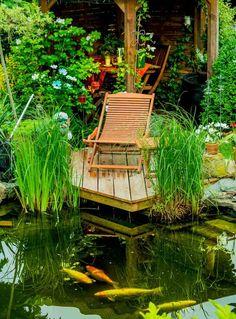 bassin deau avec poissons - Lit A Eau Avec Poisson