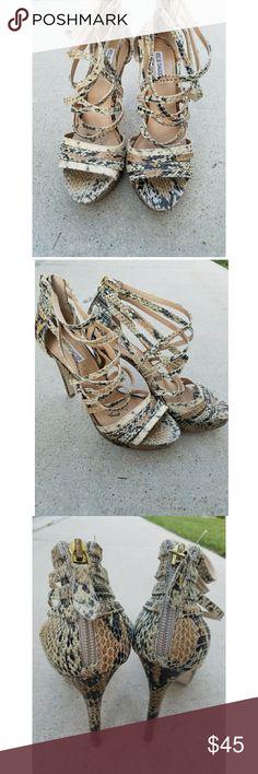 Kelsi Dagger Snakeskin Heels Gorgeous snakeskin heels in good condition. Kelsi Dagger Shoes Heels