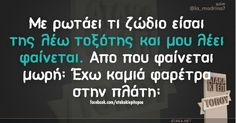 Τοξότης Funny Quotes, Funny Memes, Jokes, Funny Greek, Sagittarius, Zodiac Signs, Cards Against Humanity, Hilarious Quotes, Funny Phrases