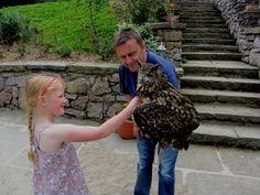 Llandudno farm. Owl and Rachel.