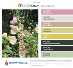 I found these colors with ColorSnap® Visualizer for iPhone by Sherwin-Williams: Haute Pink (SW 6570), Original White (SW 7077), Pinky Beige (SW 0079), Primavera (SW 9031), Frolic (SW 6703), Roycroft Bottle Green (SW 2847), Tricorn Black (SW 6258), Romaine (SW 6730).