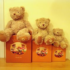 Our Moulin Roty Papa, Mama, and Baby bears are the perfect gifts for the little ones in your life.