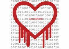 Learn more about the #Heartbleed bug, how it's affecting internet security and how you can protect your personal information on The Spark! #AmbitEnergy