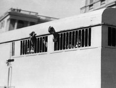 This picture taken on June 16, 1964 shows eight men, among them anti-apartheid leader and African National Congress (ANC) member Nelson Mandela, sentenced to life imprisonment in the Rivonia trial leaving the Palace of Justice in Pretoria with their fists raised in defiance through the barred windows of the prison car.