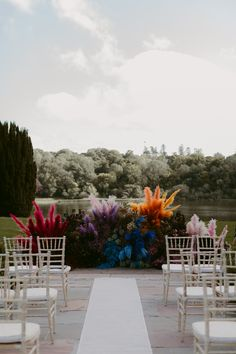 Colourful Pampas Grass for Wedding Ceremony Decor   By Adam and Grace   Colourful Wedding   Pink Pampas Grass Wedding Decor   Bright Wedding Decor   Bride in Glasses   Bright Wedding Flowers   Pampas Grass Decor   Groom And Groomsmen Shirts, Bright Wedding Flowers, Ireland Wedding, Wedding Ceremony Decorations, Pampas Grass, Wedding Looks, Real Weddings, Grass Decor, Wedding Inspiration