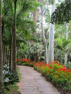 Inhotim, Brumadinho - Minas Gerais - Brasil