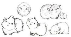 Some more guinea pig drawings by katina
