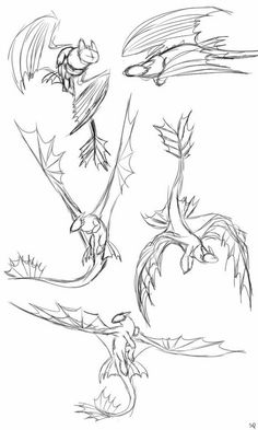 Art Drawings Sketches Simple, Animal Sketches, Animal Drawings, Cool Drawings, Tattoo Geek, Walpapers Cute, Dragon Anatomy, Dragon Poses, Dragon Sketch