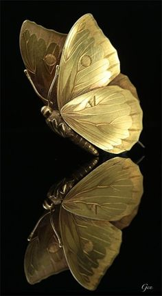 Gold and black / butterfly reflections Black Women Art, Black Art, Black Gold, Color Black, Gold Wallpaper, Butterfly Wallpaper, Black Backgrounds, Wallpaper Backgrounds, Phone Wallpapers