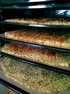 Raw Sunflower and Pumpkin Seed Crackers in Excalibur