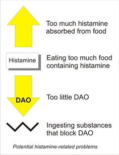 Diagram showing four potential histamine problems: too much absorbed from food, eating too much histamine-containing food, having too little DAO, or ingesting substances that block DAO; by Candace Van Auken
