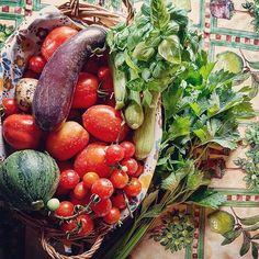 #verdure_biologiche  # orto settembre