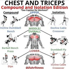 Chest and Triceps Workout . For see more of fitness Freaks visit us on our website ! Chest And Tricep Workout, Chest Workout For Men, Gym Workouts For Men, Weight Training Workouts, Chest Workouts, Triceps Workout, Tri Workout, Push Workout, Gym Workout Chart