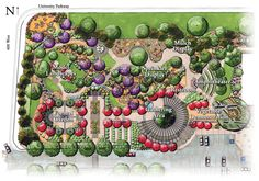images about Garden Plans on Pinterest Backyard