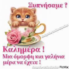 Morning Coffee Images, Good Morning Quotes, Teddy Bear, Anastasia, Animals, Wedding Breakfast Images, Animales, Animaux, Teddy Bears