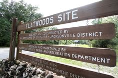 Flatwoods Park in northeast Hillsborough County