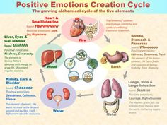 The physical effects of positive emotions