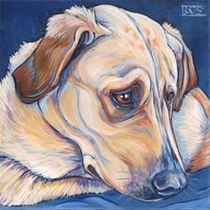 Cody the Yellow Lab Mixed Breed Dog Custom Pet Portrait Painting in Acrylic…