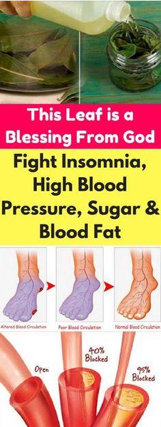 This Leaf can Fight Insomnia, High Blood Pressure, Sugar and Blood Fat – seeking habit #BloodPressureHerbs