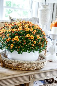 Fall home tour with beautiful fall details you can add to your home this fall. Each detail is filled with the lushness of the season! Lots of ideas Autumn Decorating, Porch Decorating, Decorating Tips, Fall Home Decor, Autumn Home, Seasonal Decor, Holiday Decor, Low Light Plants, Primitive Homes