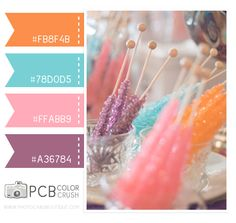 Category : Color Crush Palette | Photographer Templates by Photo Card Boutique - Page 12