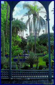 Jardin Majorelle - Marrakesh. Created in the 1920's by French painter Louis Majorelle and later owned by Yves Saint Laurent