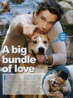 David James Elliott, former star of JAG and now star of CBS's Close to Home, revealed his new found love of dogs after adopting a pit bull named Jade from a friend.