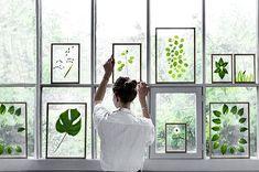 Details of DIY Natural Glass Framed Dried Floating Plants Flowers Wood Photo Frame - Diy & Crafts Projects Cadre Design, Floating Plants, Floating Frame, Deco Nature, Photo Picture Frames, Hanging Picture Frames, Arte Floral, Photo On Wood, Home And Deco