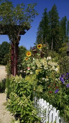 Hidden Garden nursery in  Priest River, ID. Great plants, awesome prices and gorgeous display garden. Off Eastside Rd. Look for signs.