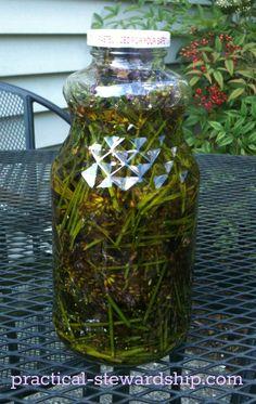 DIY Lavender Oil