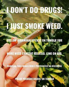 """🔞 """"Não me drogo! Somente fumo maconha."""". Siga @bananaexplicit no @tumblr @instagram para mais conteúdo relacionado à #maconha. 🔮Link na Bio.  ℹ Pics by / Imagens por yourgreensoul no @tumblr.  Missing some credit? Contact us! ♡  #weedstagram420 #cannabis #weed #420 #potgraph #maconha #ganja #sesh #tumblr #stonergirl #stoned #dope #legalize #love #tbt #marijuana #pot #ganja #art #woman #hippie"""
