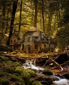 Old Mill, Black Forest Germany