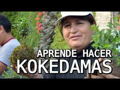 Aprende como hacer y mantener tu kokedama en casa. - YouTube
