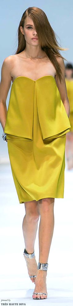 Paris FW Guy Laroche Spring / Summer 2014   The House of Beccaria#