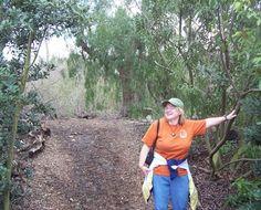 Dream Imagine Believe Achieve: The Benefits of Hiking