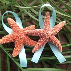 New 'Tiffany Blue' option now available on both sugar and knobby starfish Boutonnières!