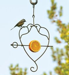Loving Doves Fruit Spear Birdfeeder