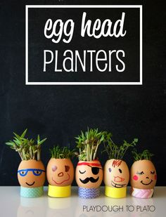 Super adorable egg head planters. Fun, hands-on spring science.