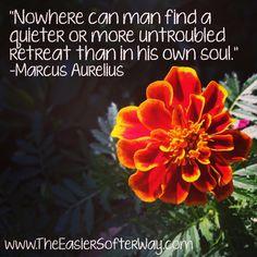 #quiet #meditate #meditation #soul #silence